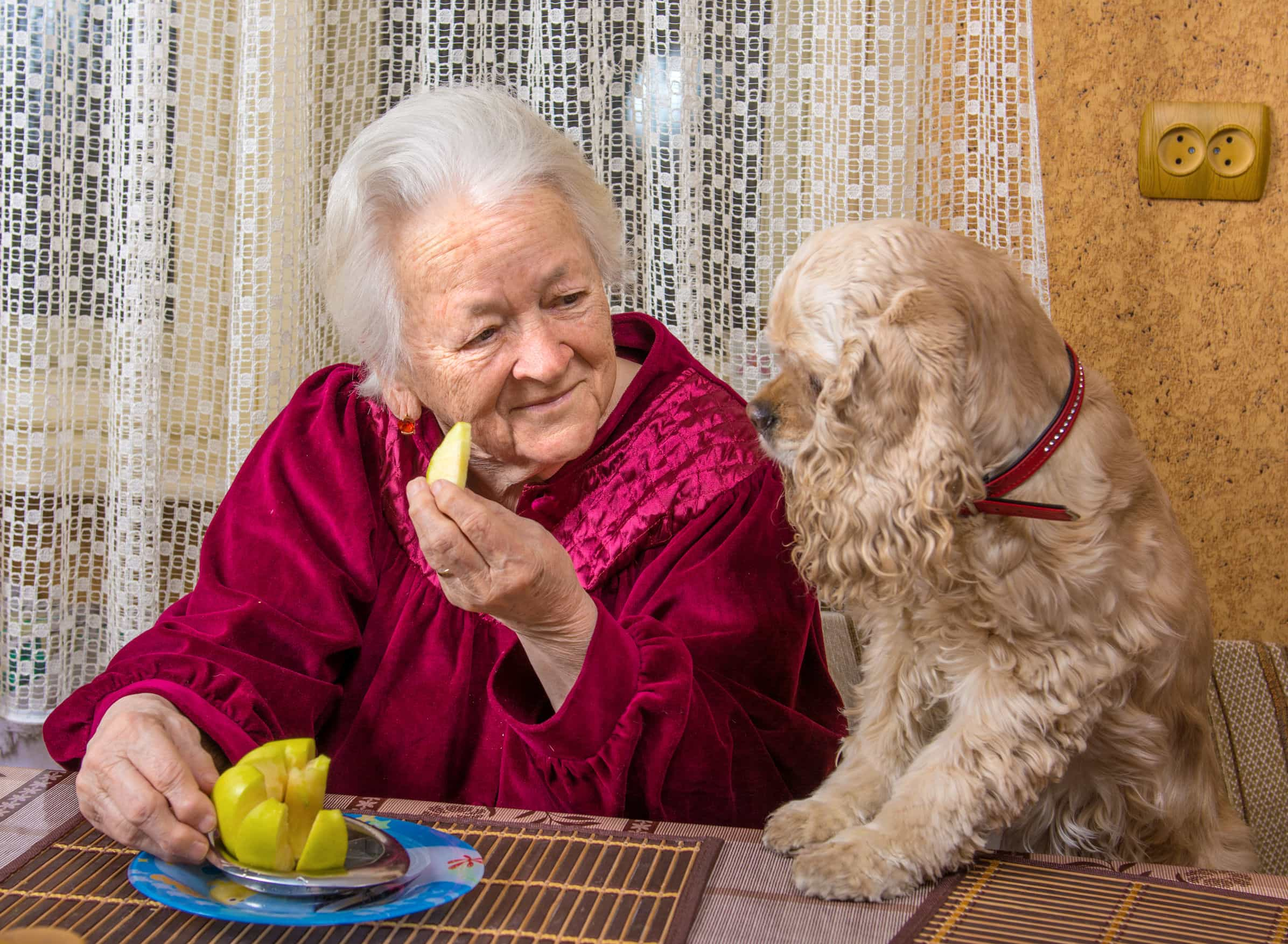 Una terapia contra la soledad de los ancianos